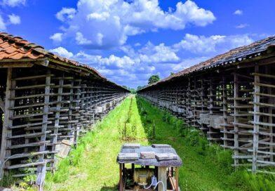 Samenwerking BOEi en Landschap Overijssel